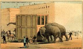 Jumbo in his cage being hauled up Broadway, as portrayed by lithographers J.H. Bufford & Sons. Photograph: Digital Collections and Archives, Tufts University.